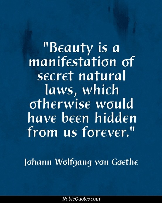 14 best images about beauty quotes on pinterest