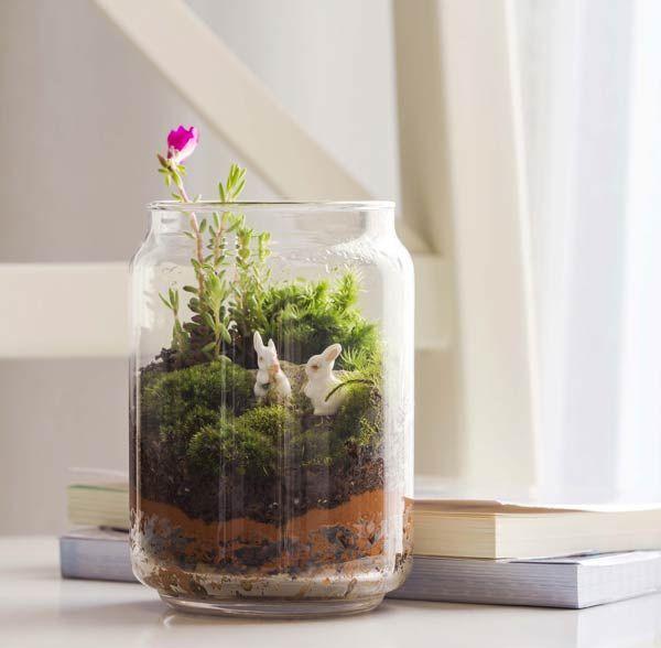 ozzies-terrariums
