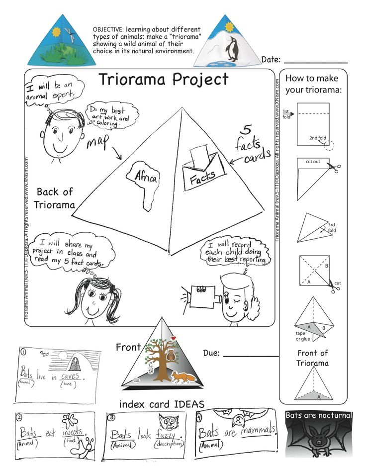 Triorama project diagram