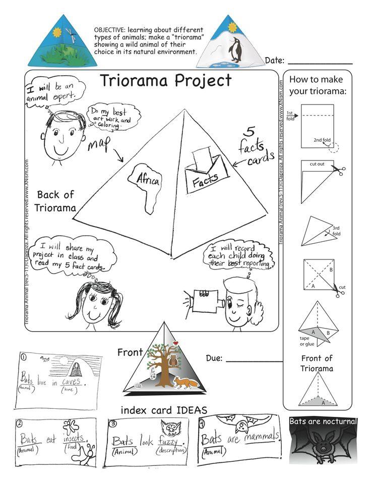 triorama project diagram