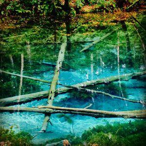 神がつくった奇跡の青に吸い込まれそう!「神の子池」が神秘的すぎる! - NAVER まとめ