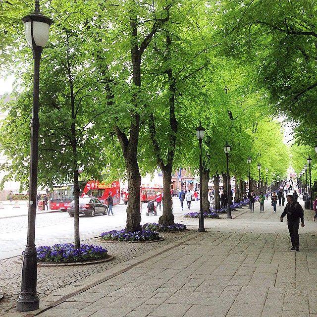 Bredt og fint fortau til Karl Johans gate - Oslo #alle #fortau #gange #tur #promenade #karljohansgate #oslo #norway