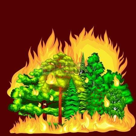smoke damage: Erdőtűz, tűz erdei táj kár, természet ökológia katasztrófa, égető fák, veszély erdőtűz füstfelleget, lángol a fa háttér vektoros illusztráció. Wildfire égő fa, piros és narancssárga színű.