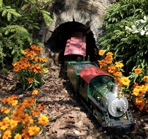 Woodland Express Garden Railroad wird im Holden Arboretum eröffnet –   – Live steam locos
