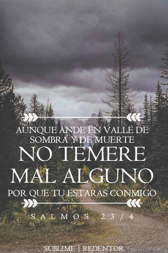 Versiculos De La Biblia De Fe: Salmos 23:4 Aunque Ande En Valle De Sombra De Muerte, No