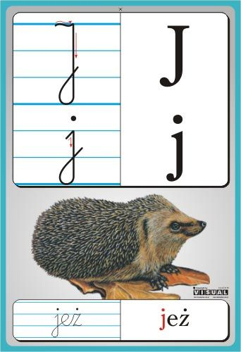 litery przedszkole j - Szukaj w Google