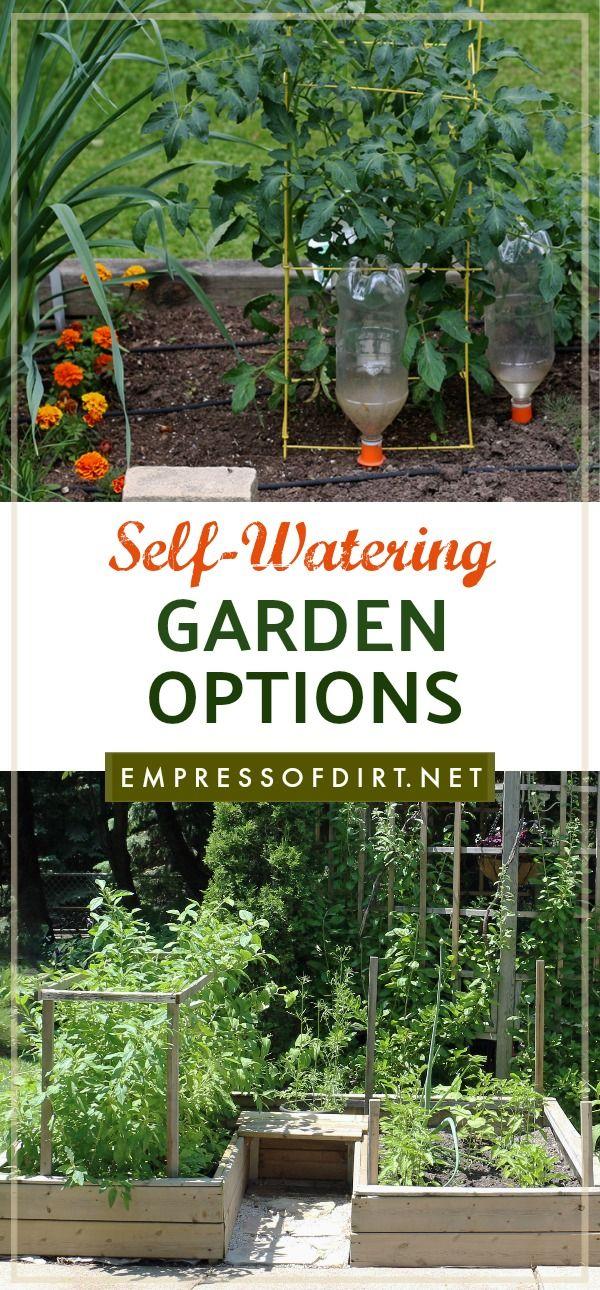 practical self watering garden ideas garden pinterest garden rh pinterest com