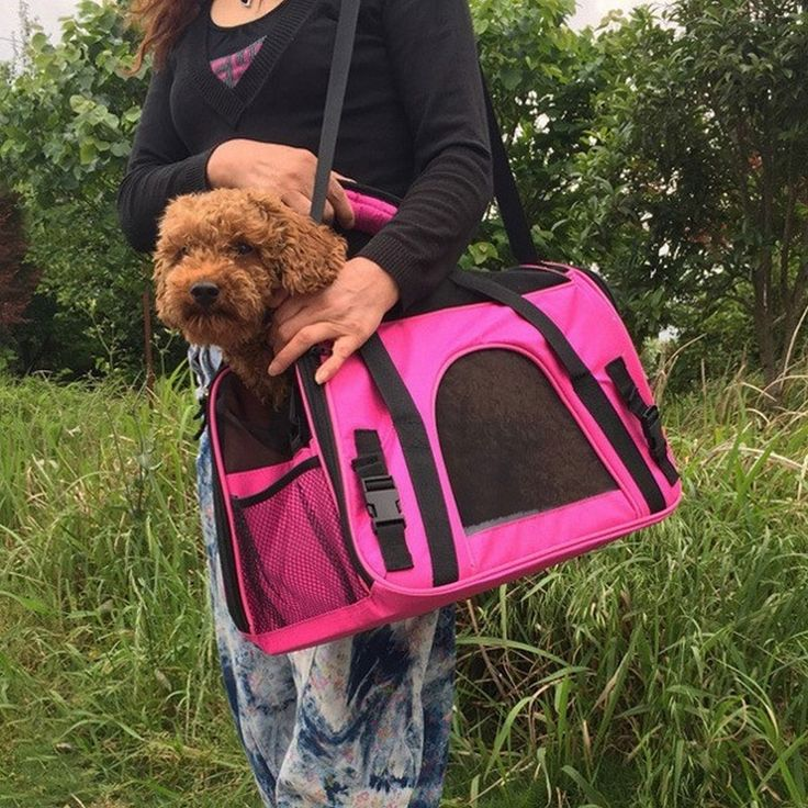 ==> [Free Shipping] Buy Best Pet Carrier Dog Bag Pet Airline Approved Carrier for Puppy Cat Small Animal Transport Bag Carriers BJD Online with LOWEST Price | 32712041349