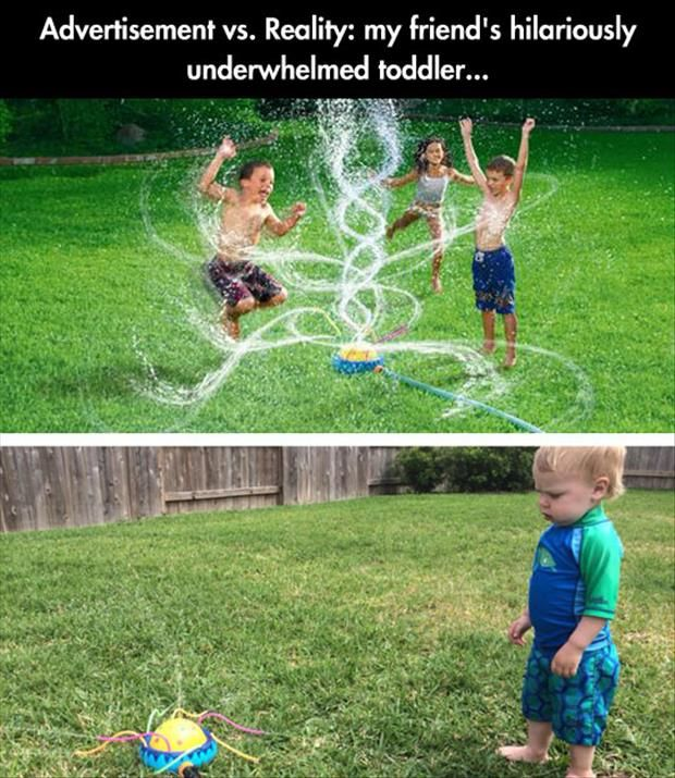 funny expectation vs reality pictures