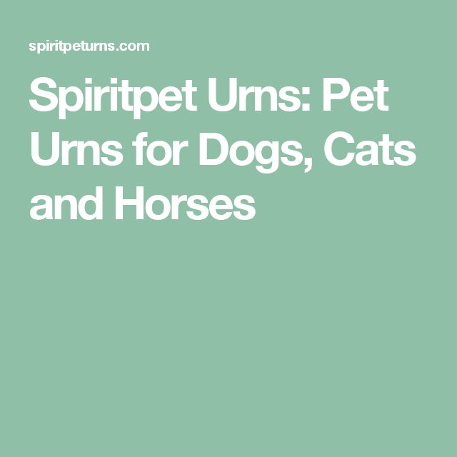 Spiritpet Urns: Pet Urns for Dogs, Cats and Horses