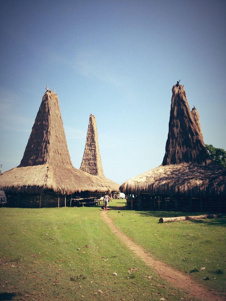 amazing Sumba willyyohanes: Rumah tradisional sumba dengan desain yang unik dan filosofis