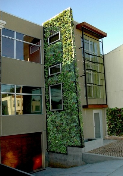 Vertical garden screen wall - verticaal tuinieren