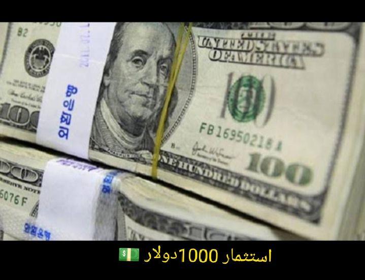 استثمار 1000 دولار في مشروع ناجح مشروعات بأرباح خيالية Dollar Personalized Items Us Dollars