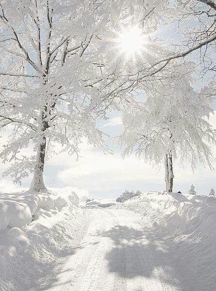 Sunshine glistening over the snow