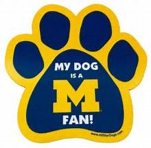 Image result for michigan wolverines