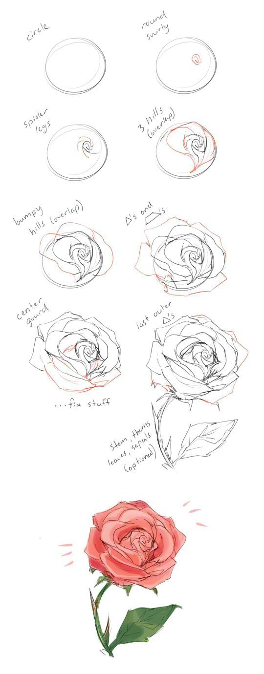 How To Draw A Rose Tutorial By Cherrimut On Tumblr Art In 2018