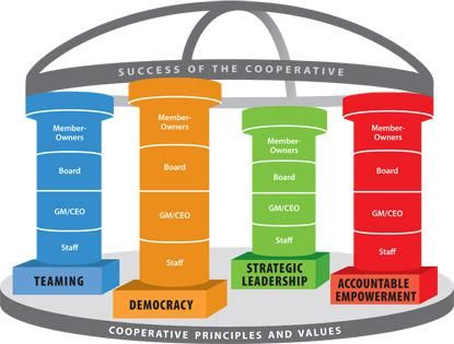 illustration of the cooperative principles and values