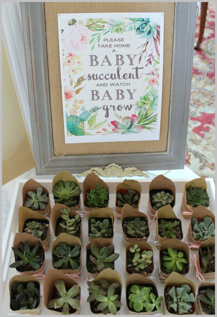 [Baby Shower Ideas] Dinosaur Themed Baby Shower Ideas * Find out more at the image link. #MaternitySuperFood