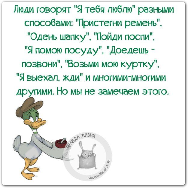 цитаты, ...