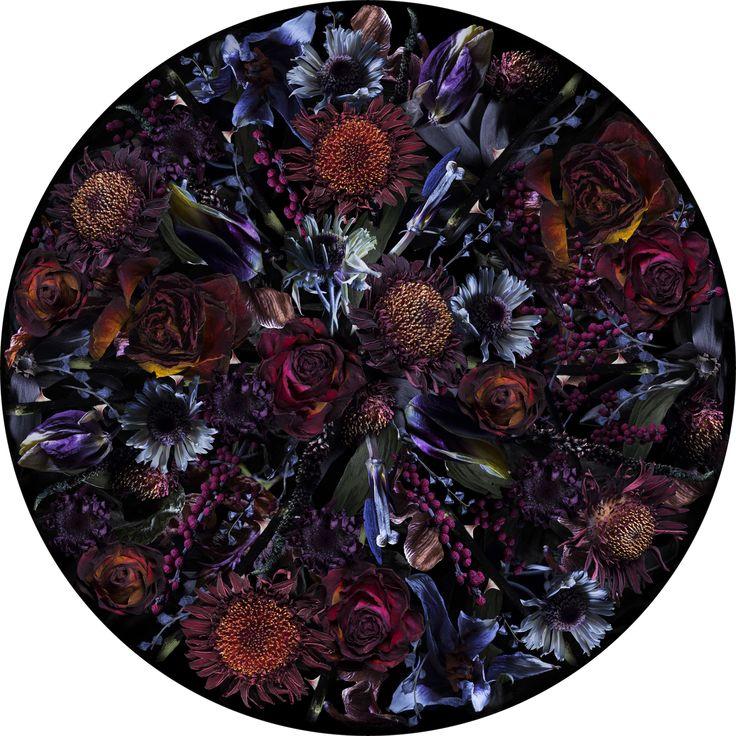 Fool's Paradise - Moooi Carpets
