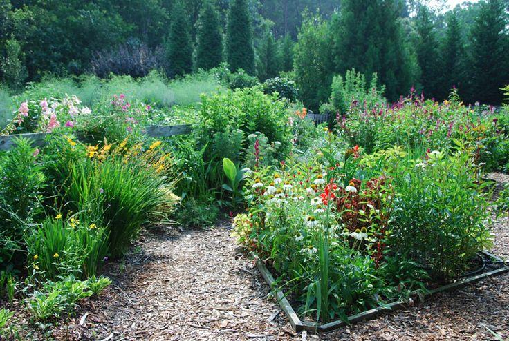 12 best images about cutting flower garden on pinterest for Cut flower garden designs