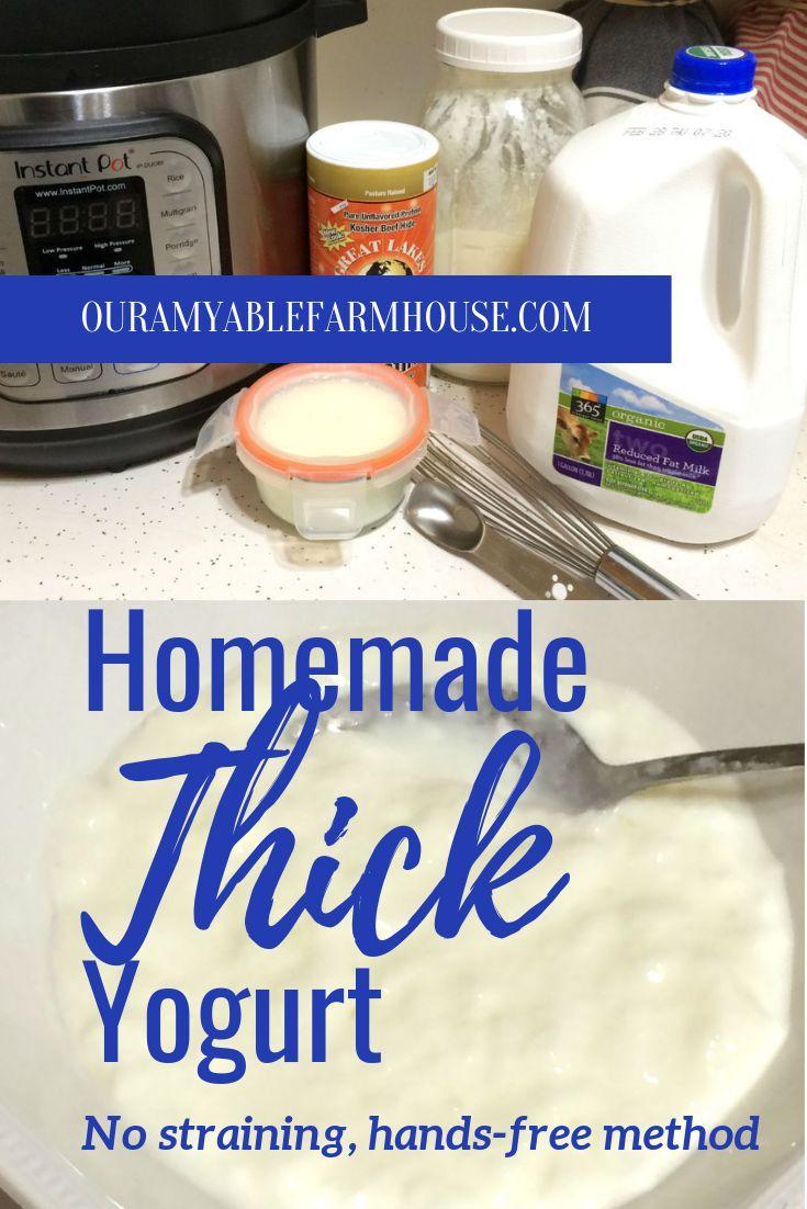How To Make Thick Yogurt At Home Homemade Thick Yogurt In 2020 Thick Yogurt Instant Pot Yogurt Healthy Homemade Recipes
