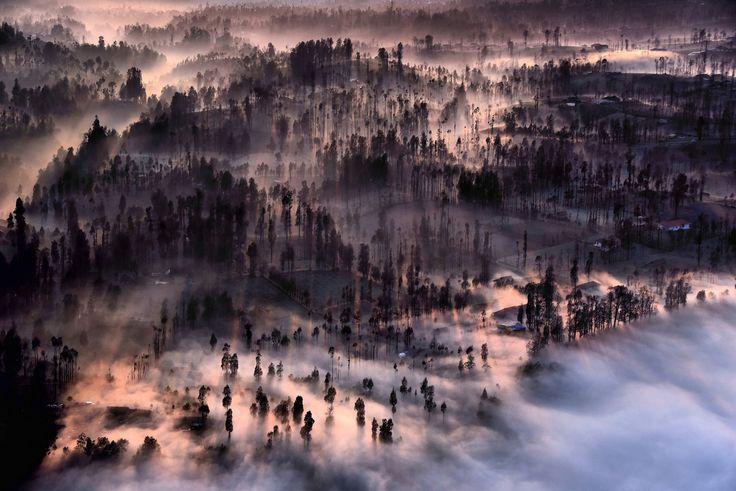 Fog covering Cemoro Lawang as the sun rises.