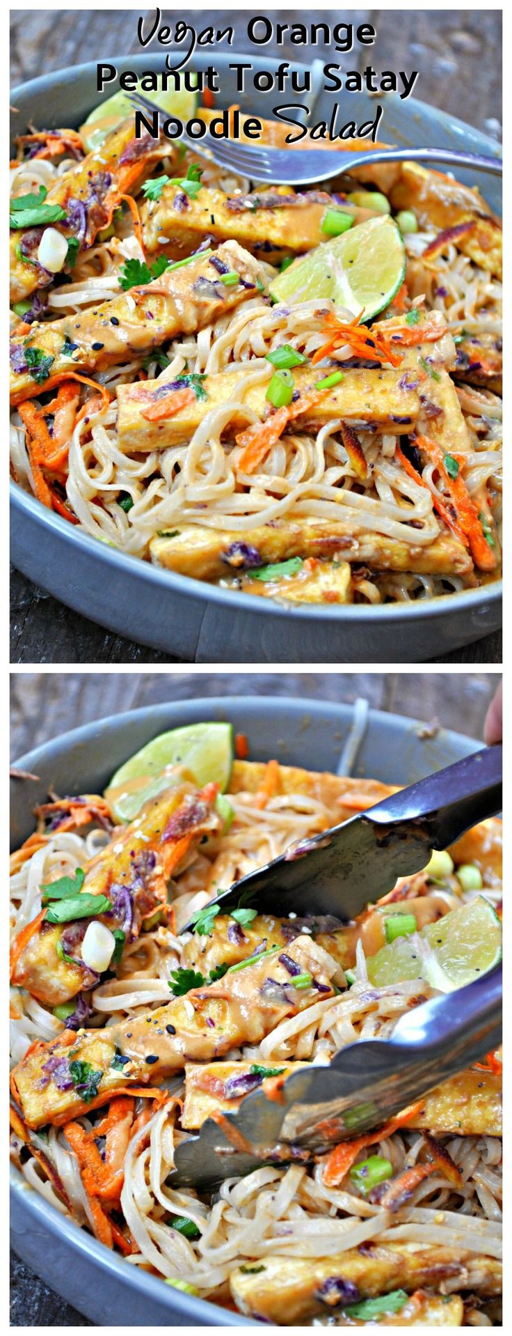 Crispy tofu, veggies and rice noodles tossed with an orange peanut satay dressing. This noodle salad is quick, crazy flavorful, healthy and gluten free!