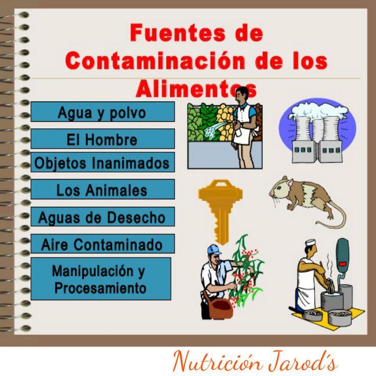 La Prevención de la contaminación de los Alimentos es la clave para evitar las Enfermedades Transmitidas por los Alimentos (ETA)