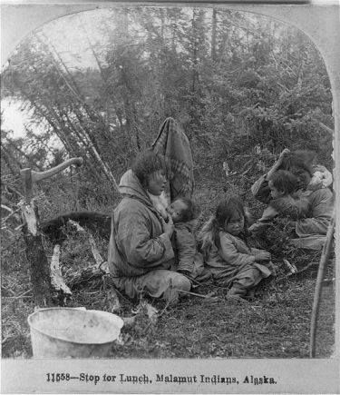 Pause déjeuner, Indiens Malamut, Alaska Carte postale, 1899