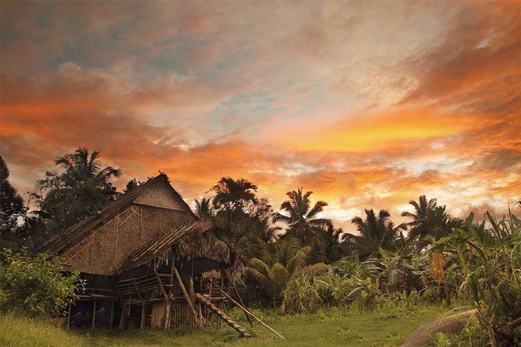 UMA, house og Mentawai's Tribe. Mentawai, West Sumatra -Indonesia