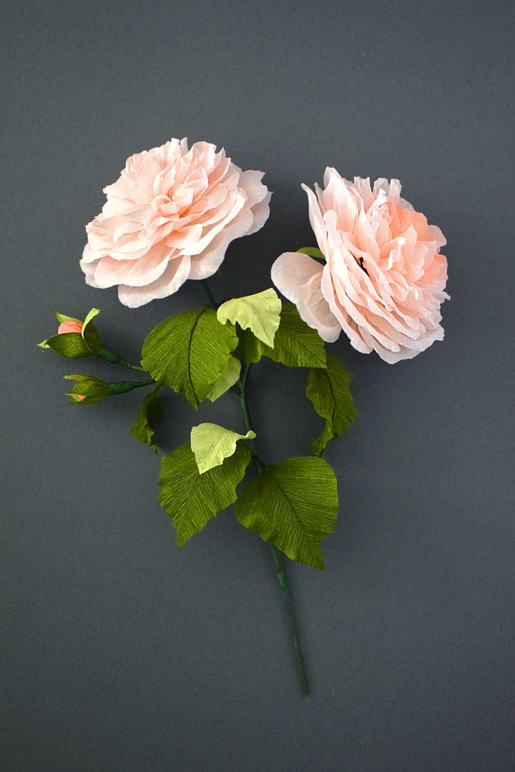 Leather Accent Tag - Rose Stamens by VIDA VIDA qSLOzfIJ