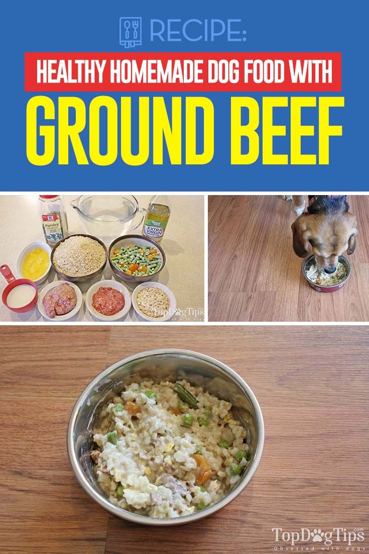 Recipe Healthy Homemade Dog Food With Ground Beef Dog Food