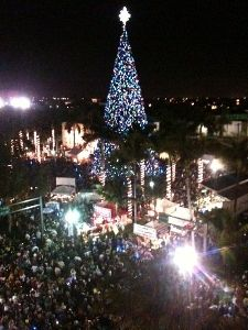 Downtown Delray Beach :: Holiday Festivities