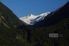 Ausblick zum Großvenediger, ins Herz des Nationalpark Hohe Tauern. Erlebe auch du eine erlebnisreiche Wanderung mit dem Bergführer von Alpindis.at (Untersulzbachtal, Neukirchen, Salzburgerland)