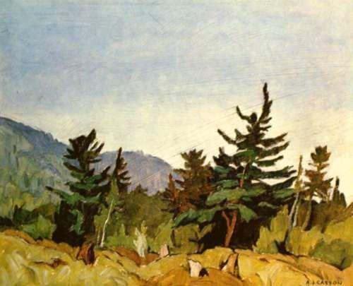 casson-woodland-combermere.jpg 500×405 pixels