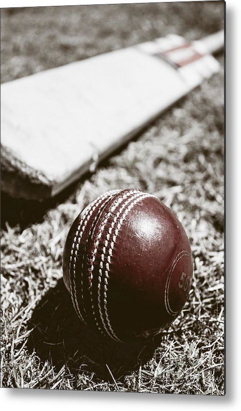 Cricket Metal Print featuring the photograph Vintage Cricket by Jorgo Photography - Wall Art Gallery