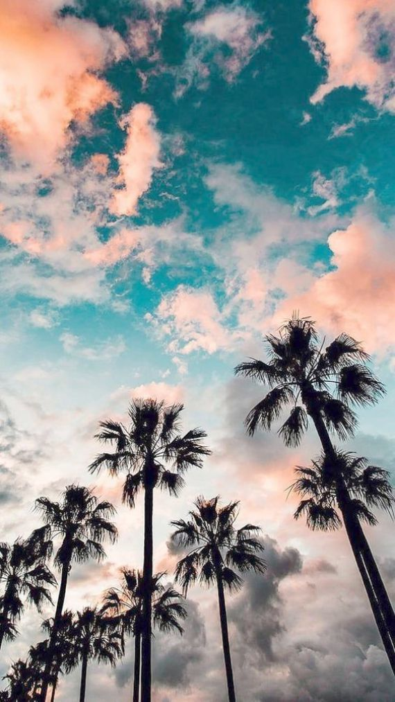 Wallpaper For Iphone Xr Home Screen Such Gadgets Mhw Unlike Floral Wallpapers For Iphone 8 Other Wallpa Iphone Wallpaper Vintage Nature Wallpaper Art Wallpaper
