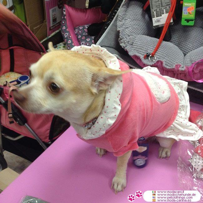 Vestido Fiona en Chenille Rose para Perritas #ModaCanina #Chihuahua - Suave vestido rosa en chenille para perritas, con capucha forrada en lunares rosados; disponible para Chihuahua, Caniche, Maltés, Pomerania, pinscher