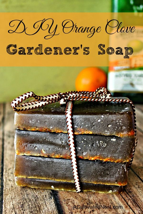 DIY Gardener's Soap! If you've never tried making soap before - this heavenly scented orange clove olive oil soap is the recipe to try! Very easy to make and customize. This would make such a lovely gift! | Handmade Gifts