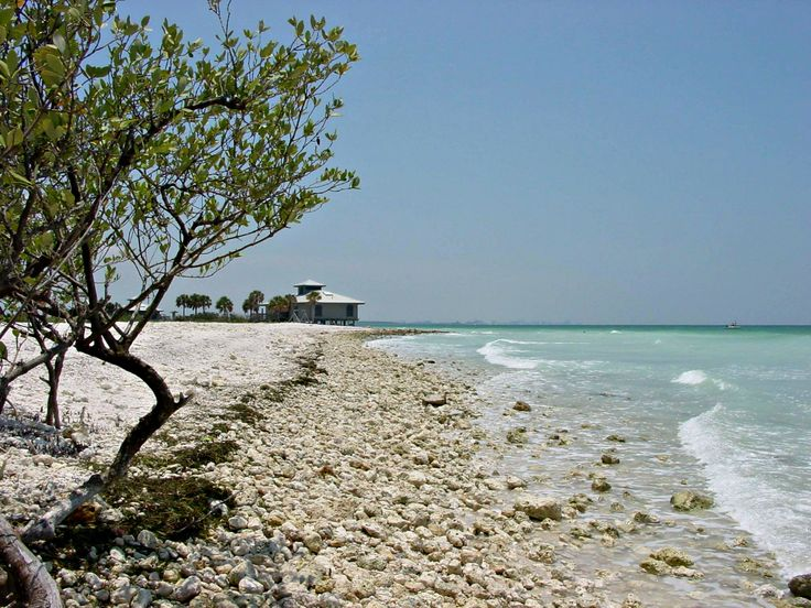 Honeymoon Island State Park, in nearby Dunedin, courtesy of Holiday Inn Hotel and Suites Clearwater Beach