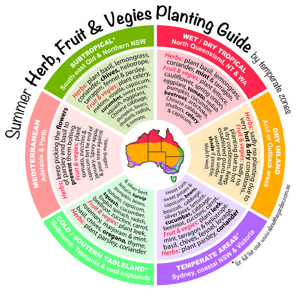 When to harvest herbs, fruits, veggies in Australia!