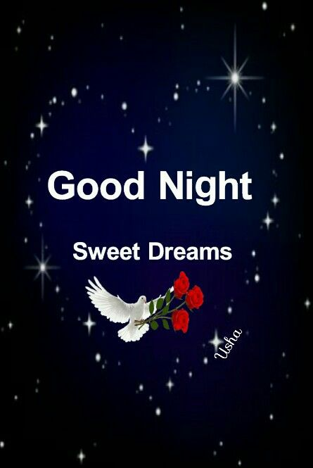 Good Night Sister And Allhave A Peaceful Nightgod Bless Xxx