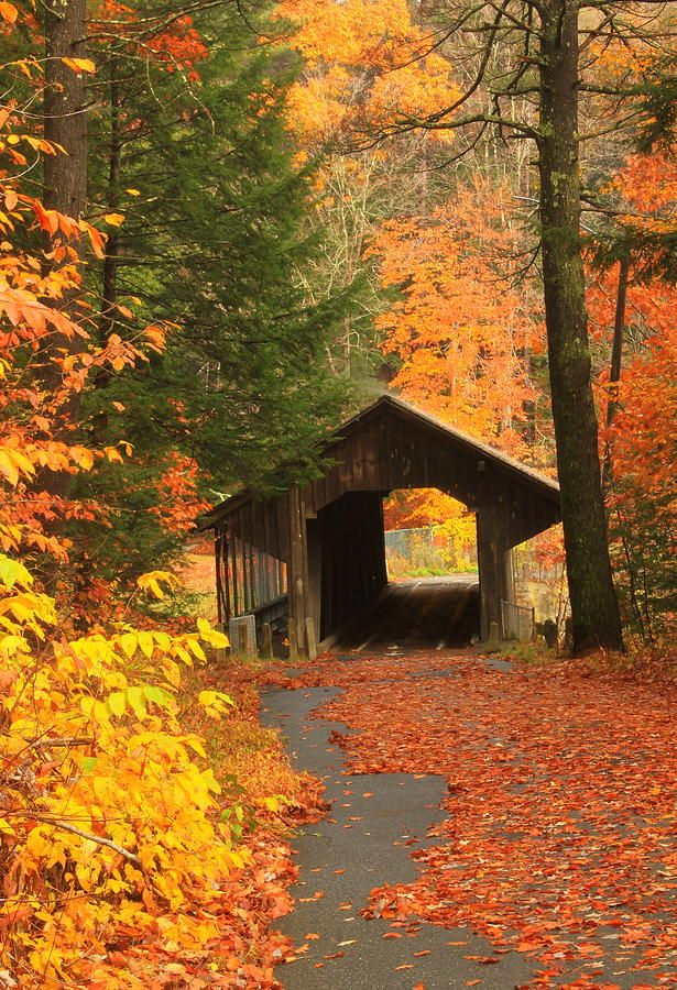 Greenfield Pumping Station Bridge Autumn Photograph