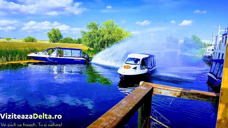Dunărea străbate nu mai puţin de 2.860 de kilometri şi suprafaţa a 10 state, dar numai aici fluviul a creat un real paradis natural 💎, în care oricine care ajunge aici îşi va dori să revină 😍. #viziteazadelta ☁  https://goo.gl/GDYxah?utm_content=bufferc8a55&utm_medium=social&utm_source=pinterest.com&utm_campaign=buffer 💖
