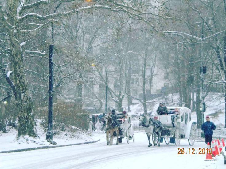 Central Park December 2010. Snow storm  . . . #ny #nyc #nycity #newyork #newyorkcity #nuevayork #manhattan #iloveny #usa #imagesofnewyork #picturesofnewyork #fotosdenuevayork #instatravel #instablog #instablogger #nyblog #nyblogger #instanyc #centralpark #snow #snowstorm