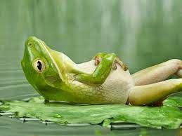 mondo di creta: la parabola della rana bollita