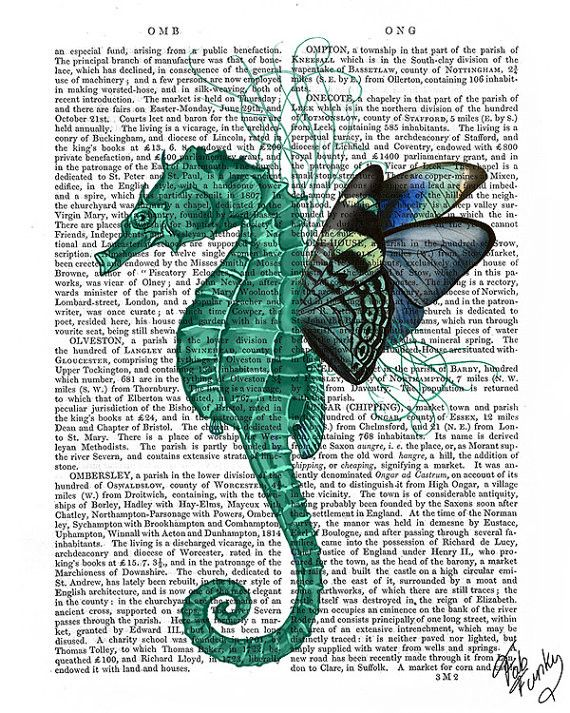 Winged Seahorse Book Print