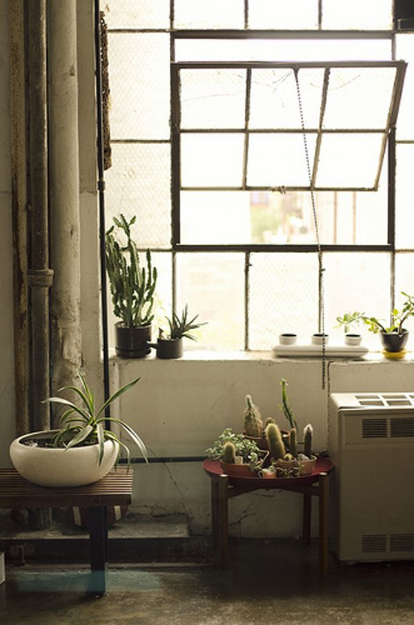 : Big Window, Window Plants, Design Interiors, Home Interiors Design, Steel Window, Design Home, Industrial Loft, Houses Design, Indoor Plants