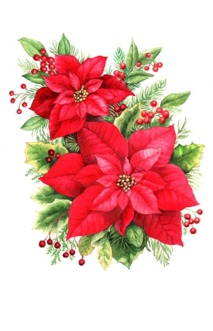 Poinsettias clip art big 700x1087 Christmas